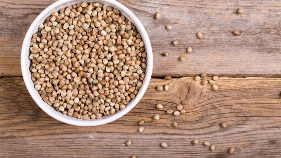 Čudotvorne sjemenke konoplje
