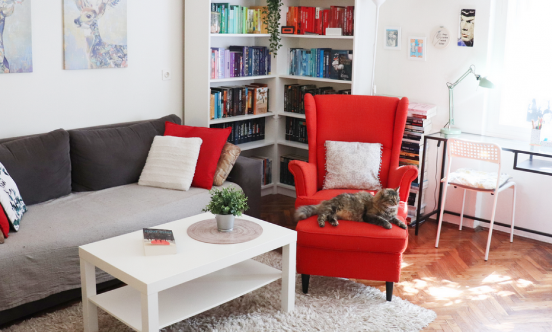 Reading corner u koji smo se zaljubili: Book oaza Ane Jembrek