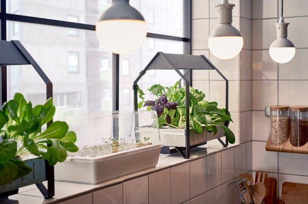 IKEA vam pomaže napraviti vrt u vlastitom domu