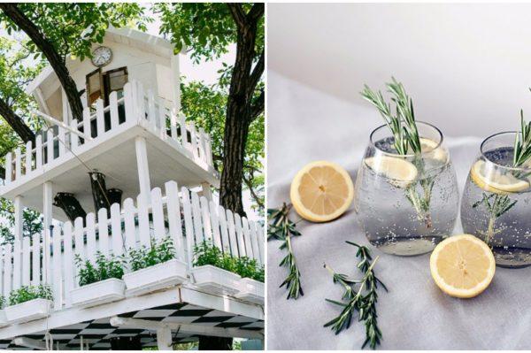 Kraj ljeta uz gin tonic u A most unusual gardenu