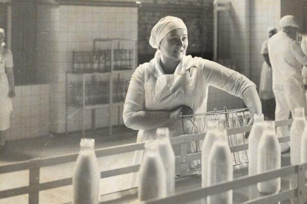 Mali proizvođači mlijeka ključ su razvoja mljekarstva u Hrvatskoj – ovo je priča o podršci velikih malima