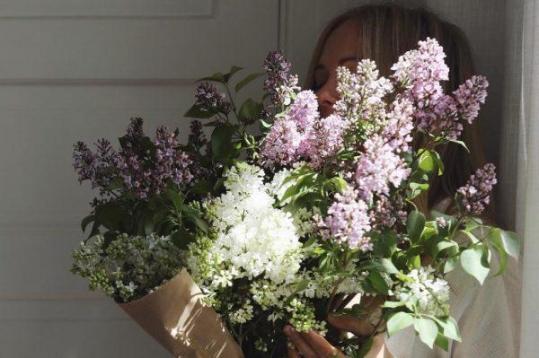 Traje sezona mirisnih jorgovana koji divno izgledaju i u vazi