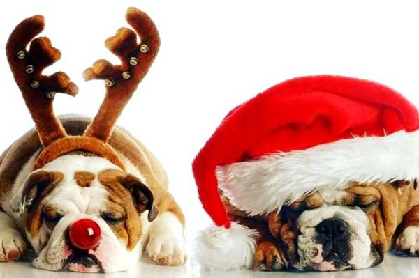 Ova božićna reklama sigurno će vas raznježiti