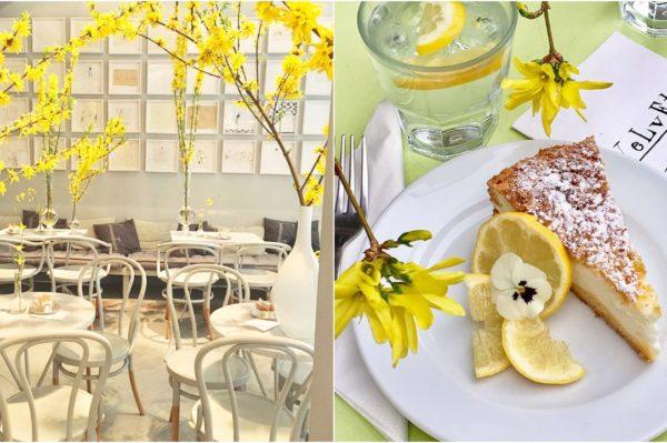 Proljetna oaza okusa i mirisa u cafeu Velvet