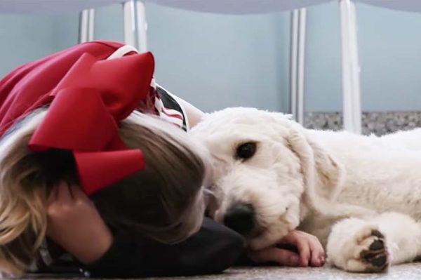 Na Netflix dolazi dokumentarac o psima za koji će vam trebati maramice