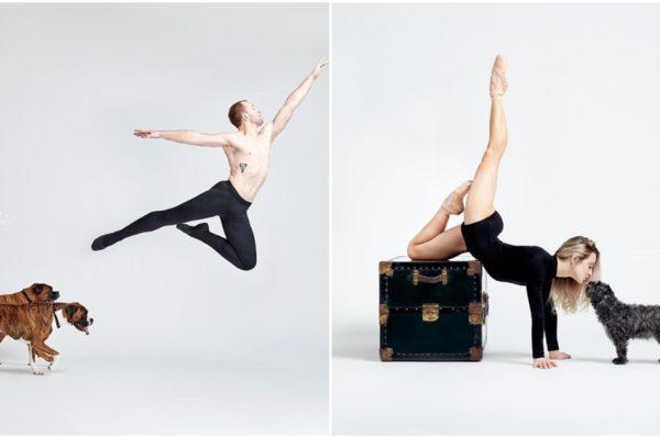 Dancers & Dogs: kad se ples i ljubimci spoje nastaje jako cool projekt