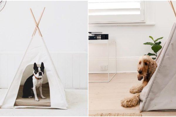 Eco-friendly krevetići za pse s potpisom australskog brenda