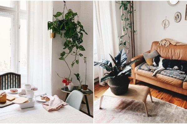 Kako izgleda cosy atmosfera proljetnog jutra u domu jedne blogerice?