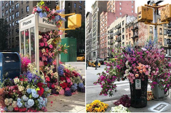 Ako još niste čuli za projekt 'Flower Flash' – sada ćete se zaljubiti u njega