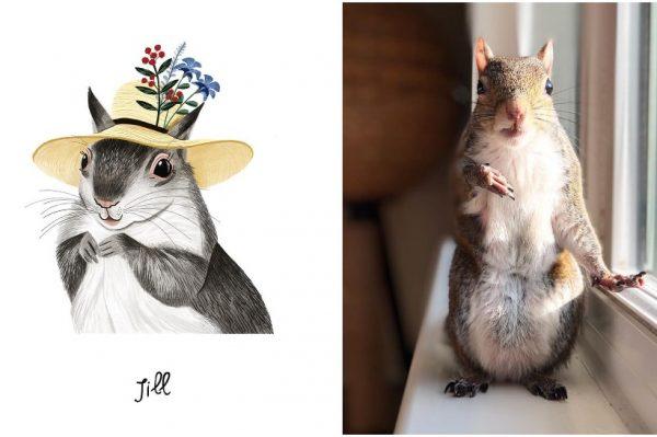 Journal Pets: Avanture preslatke vjeverice Jill
