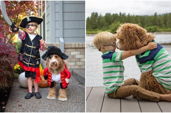 Journal Pets: Regandoodle je najslađa pseća doza na Instagramu ove jeseni