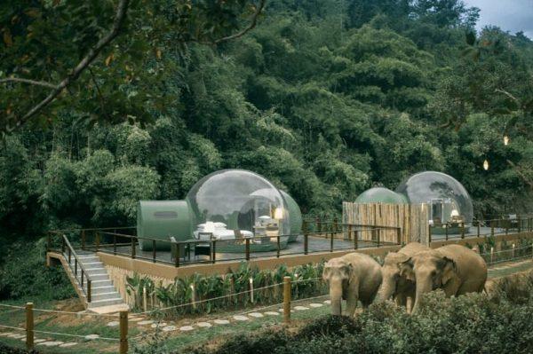 Kupole smještene usred džungle, za odmor pod zvijezdama i u društvu slonova