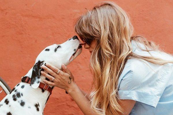 Journal Pets: Danas je Dan ljubavi prema kućnim ljubimcima