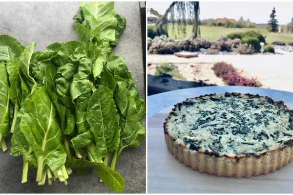 #WeLoveLocal recept: Quiche sa skutom s Paga i mladom blitvom