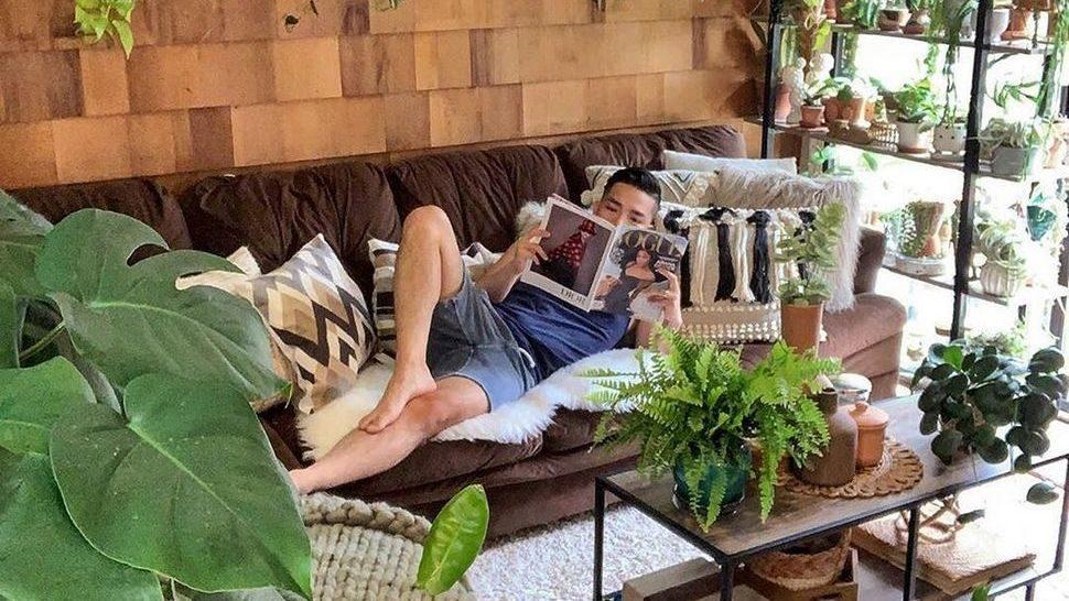 Journal Man: Kućne biljke koje će i početnici bez problema održati na životu