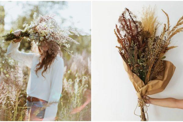 Najljepši buket je onaj koji uberete sami – u polju