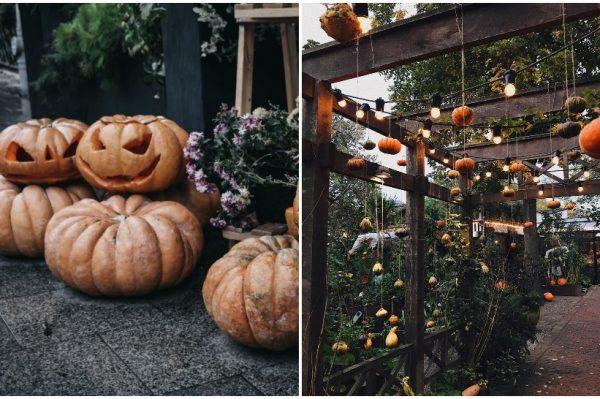 Pronašli smo fora načine kako urediti bundeve za Halloween