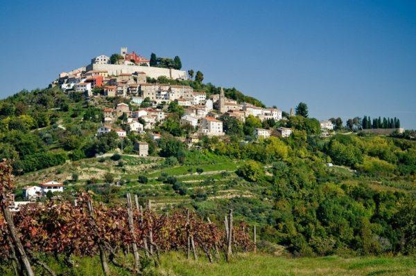 Lov na tartufe u Istri naša je ideja savršenog vikend izleta