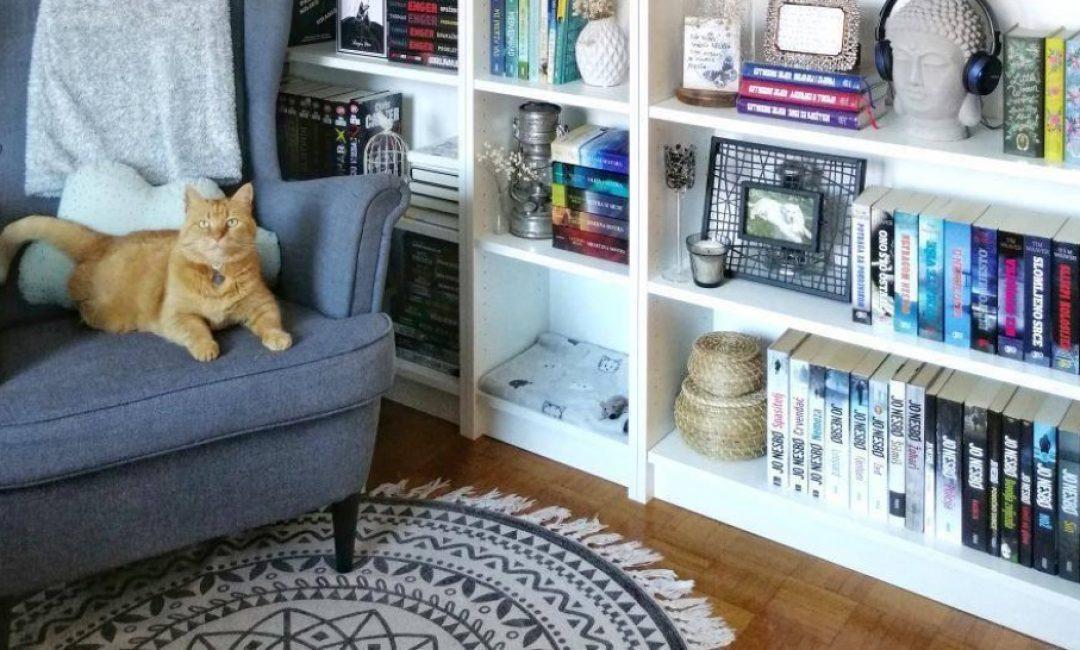 Reading corner u koji smo se zaljubili: Book influencerica Lana i njezina miljenica Ginger