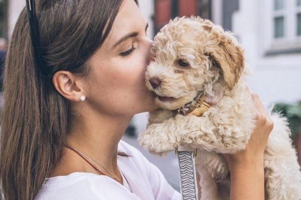 Journal Pets: Znate li da psi razumiju kad im kažete 'volim te'?