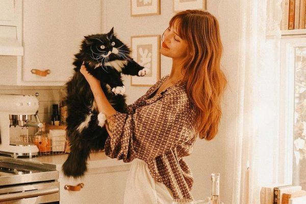 Journal Pets: Aplikacija koja će vam prevesti svaki 'mijau' vaše mezimice
