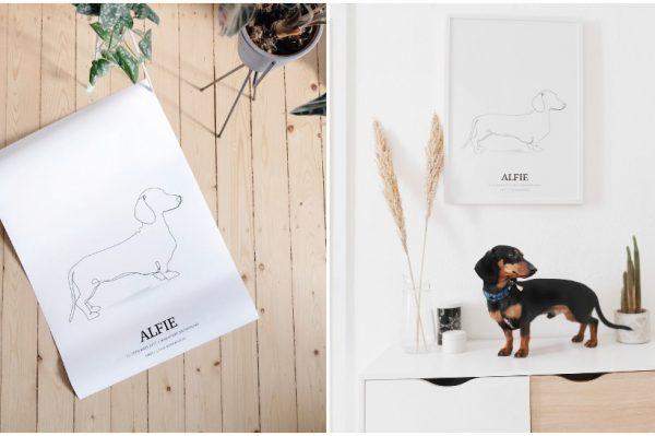 Journal Pets: Kreirajte i vi personalizirani i minimalistički portret svog ljubimca