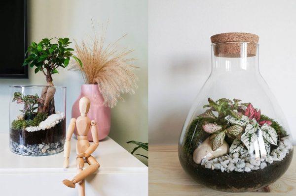 Svi ljubitelji biljaka obožavat će Mossoma concept store