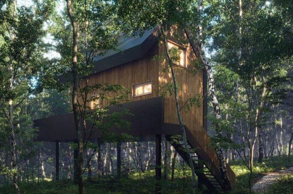 Ivona u čarobnoj šumi kod Rastoka gradi jedinstveni eco retreat s kućicama na drvetu