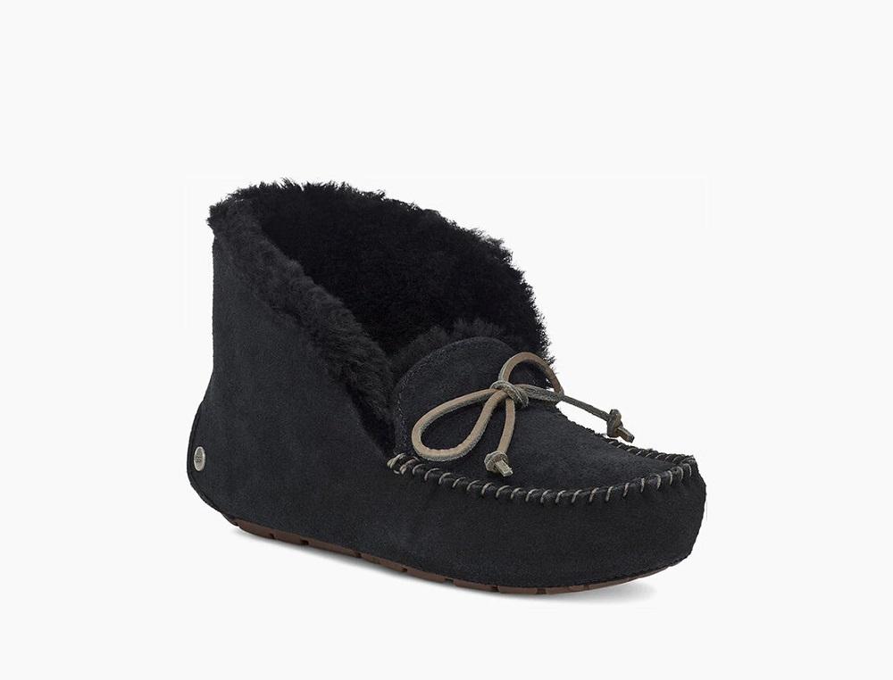UGG buce papuče zima 2020./2021.