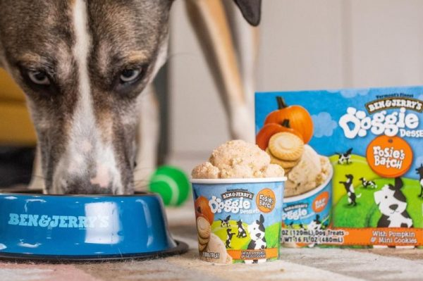 Journal Pets: Obožavani Ben & Jerry's je lansirao pseći sladoled