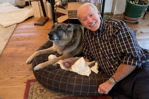 Journal Pets: Čak je i Major imao 'indoguraciju' prije nego što je stigao u Bijelu kuću