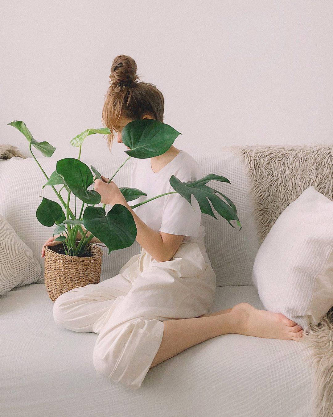 biljke-9