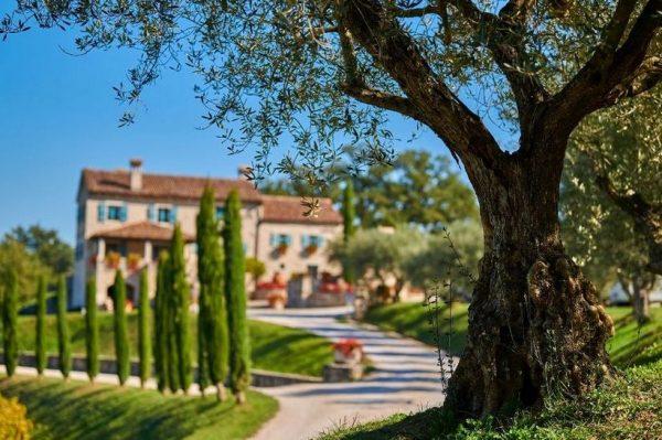 Jedna od najljepših vinarija u Istri proglašena je destinacijom godine