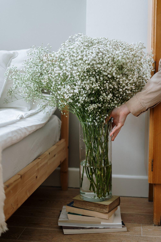 cvijeće_interijer_3