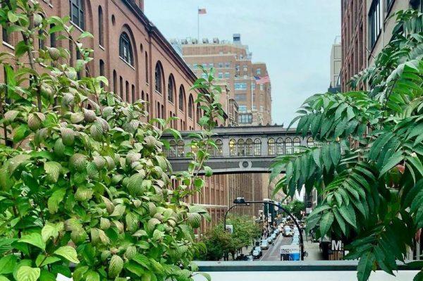 Po uzoru na New York, i London će dobiti svoj 'park na nebu'