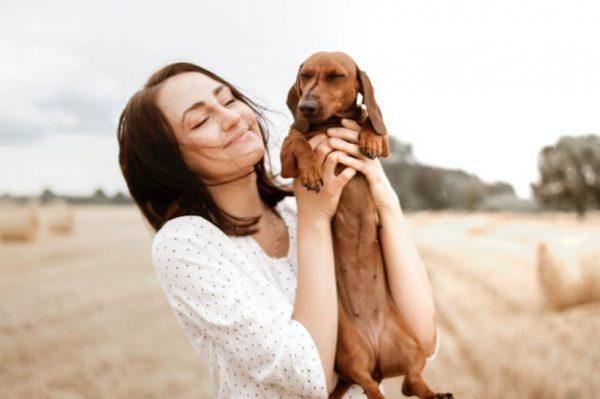 Mali vodič pri odabiru psa