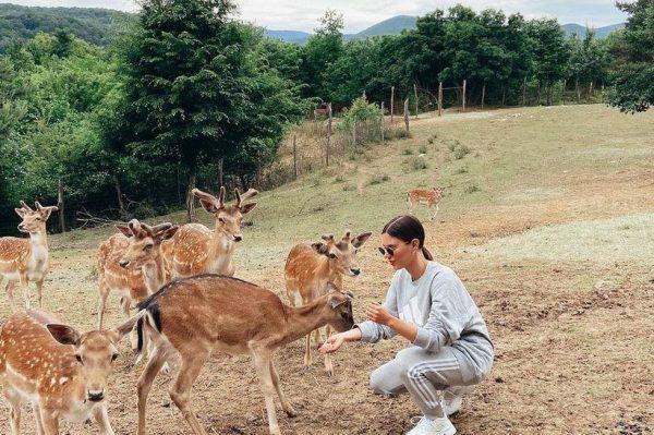 Jeste li već posjetili čarobnu Dolinu jelena kod Plitvica?