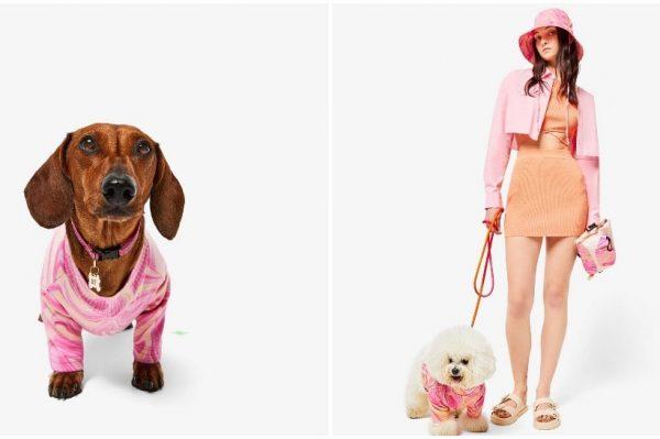 Journal Pets: Bershka je lansirala vlastitu kolekciju za kućne ljubimce