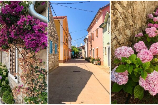 Znate li za Ilovik – čaroban otok cvijeća u blizini Lošinja?