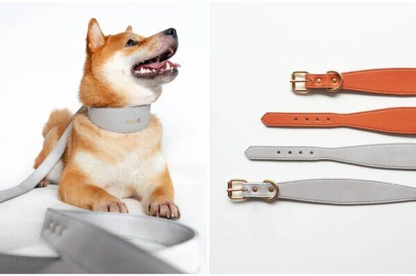 Journal Pets: Ovaj novi domaći brend kreira divne ogrlice i povodce za pse