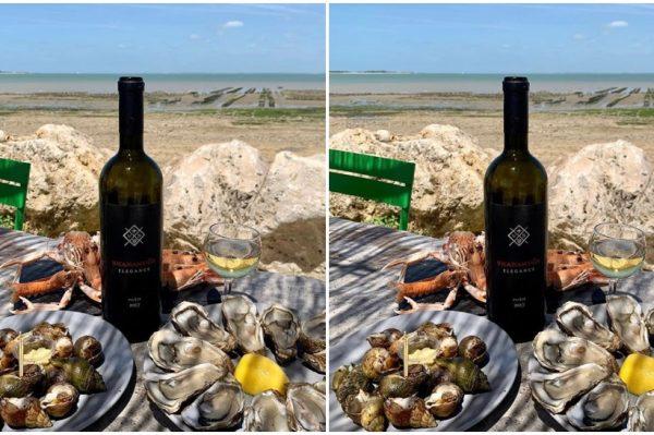Naše omiljeno ljetno piće krije se u čaši vrhunskog hrvatskog vina