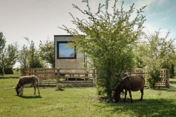 Buzzoffski kućice nalaze se u idiličnom krajoliku i savršeno su mjesto za pobjeći od svega