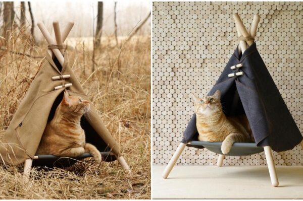 Journal Pets: Fora šatori koji su kreirani posebno za uživanje vaših maca